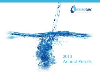 2013 Annual Results
