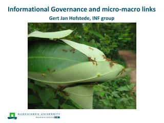 Informational Governance and  micro-macro links Gert Jan Hofstede, INF  group