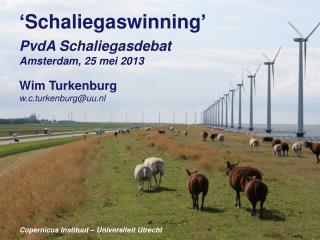' Schaliegaswinning ' PvdA Schaliegasdebat Amsterdam, 25  mei  2013 Wim Turkenburg w.c.turkenburg@uu.nl