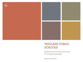 WAYLAND PUBLIC SCHOOLS