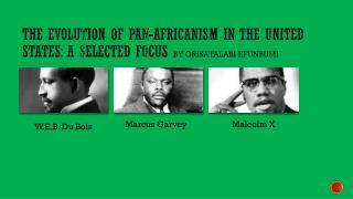 The Evolution of Pan-Africanism in the United States: A Selected Focus  by Orisatalabi Efunbumi