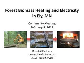 Forest Biomass Heating and Electricity in Ely, MN Community Meeting February 9, 2012 Dovetail Partners University of Mi