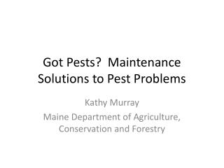 Got Pests?  Maintenance Solutions to Pest Problems