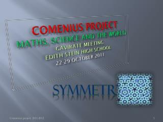 COMENIUS PROJECT MATHS, SCIENCE AND THE WORLD GAVIRATE  MEETING EDITH  STEIN HIGH SCHOOL 22-29  OCTOBer 2011