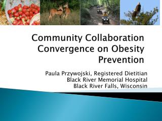 Community Collaboration Convergence on Obesity Prevention
