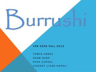 VSB 3008 Fall 2013 Tomas Abreu Adam Nash Ryan  Curnal Vincent  Lione -Napoli