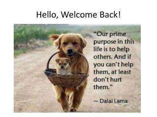 Hello, Welcome Back!