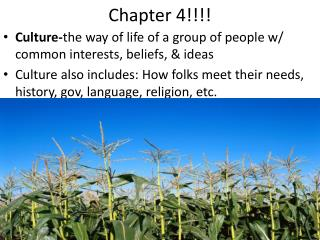 Chapter 4!!!!