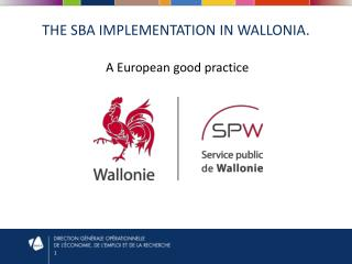 The SBA  implementation  in  wallonia .