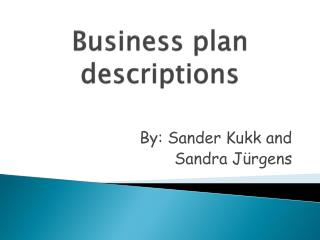 Business plan descriptions