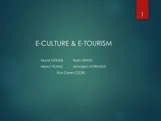 E-CULTURE & E-TOURISM