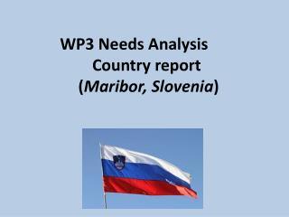 WP3 Needs Analysis Country report  ( Maribor, Slovenia )