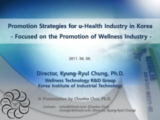 Promotion Strategies for u-Health Industry in Korea  - Focused on the Promotion of Wellness Industry -