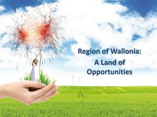 Region  of  Wallonia :  A  Land  of  Opportunities