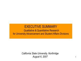 executive summary    qualitative  quantitative research