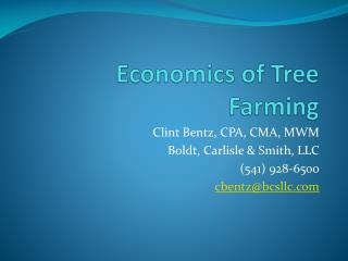 Economics of Tree Farming
