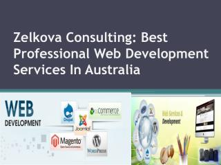 Zelkova Consulting: Professional Web Development Services