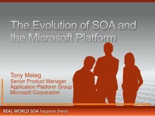 The Evolution of SOA and the Microsoft Platform