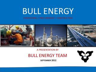 BULL ENERGY ENGINEERING | PROCUREMENT | CONSTRUCTION