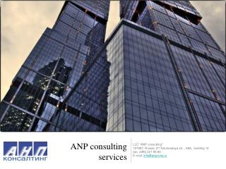 ANP consulting  services