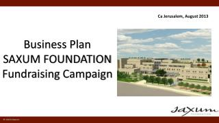 Business Plan SAXUM FOUNDATION Fundraising Campaign