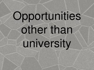 Opportunities other than university