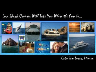 Love Shack Cruises Will Take You Where the Fun Is�