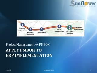 Apply  Pmbok  to erp  implementation