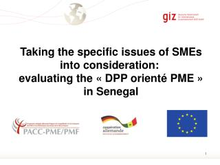 Taking the specific issues of SMEs into consideration:  evaluating the « DPP  orienté  PME » in Senegal