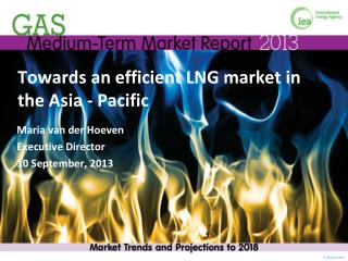 Towards an efficient LNG market in the Asia - Pacific