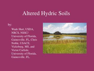 altered hydric soils