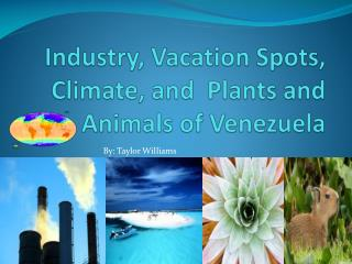 Industry, Vacation Spots, Climate, and  Plants and Animals of Venezuela