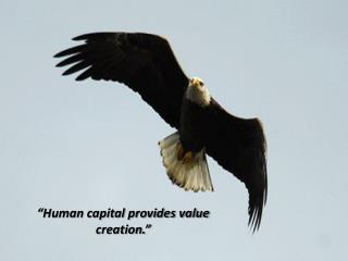"""Human capital provides value creation."""