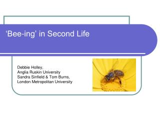 'Bee-ing' in Second Life