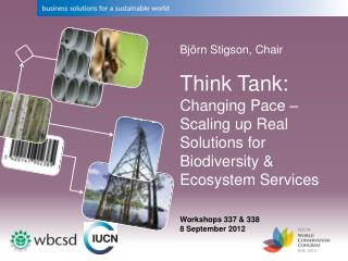 Björn Stigson, Chair Think Tank:  Changing Pace – Scaling up Real Solutions for Biodiversity & Ecosystem Services Works