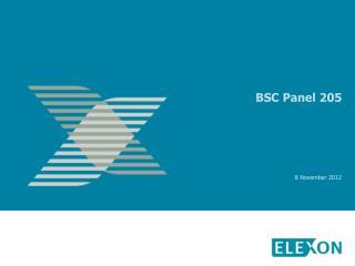 BSC Panel 205