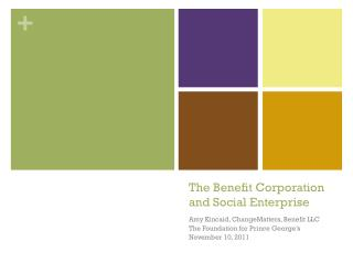 The Benefit Corporation and Social Enterprise