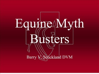 equine myth busters