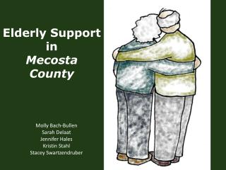 Elderly Support in  Mecosta County