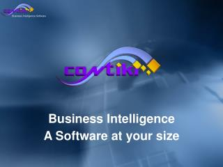 Business Intelligence A  Software  at your size