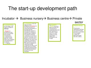 The start-up  development path