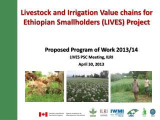 Livestock  and Irrigation Value chains for Ethiopian Smallholders (LIVES) Project