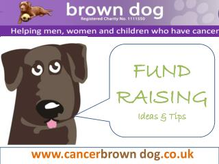 www.cancer brown dog .co.uk