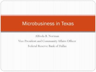 Microbusiness in Texas
