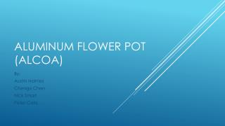 Aluminum Flower pot ( alcoa )