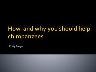 How  and why you should help chimpanzees