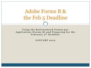 Adobe Forms B & the Feb 5 Deadline