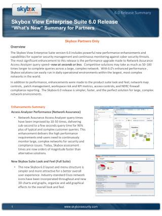 "Skybox View Enterprise Suite 6.0 Release ""What's New"" Summary for Partners"