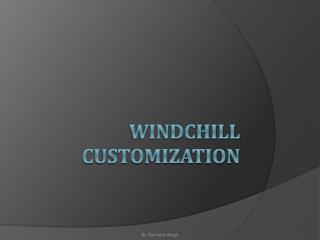 Windchill Customization