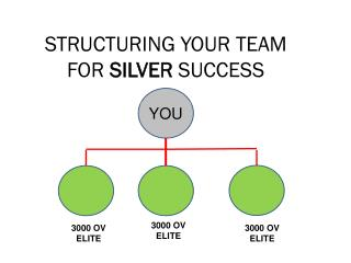 STRUCTURING YOUR TEAM  FOR  SILVER  SUCCESS